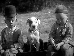 дети и щенок питбуля retro